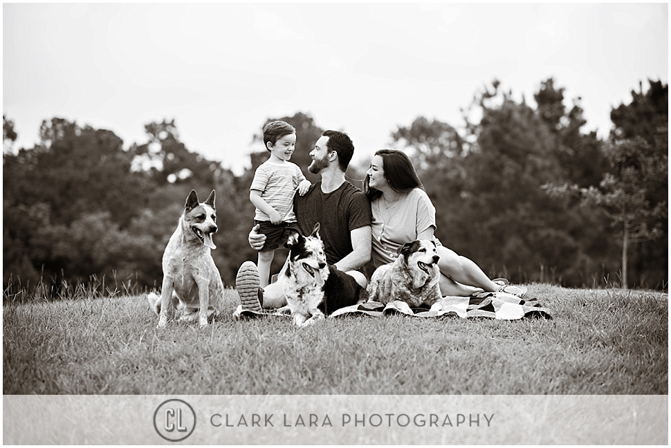 woodlands-family-photography-slade_0003.jpg