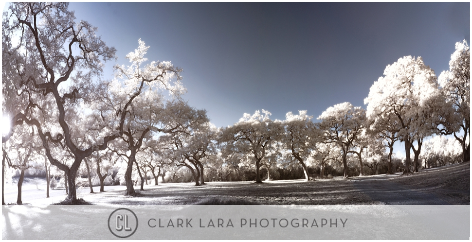clark_lara_photography_PFT010