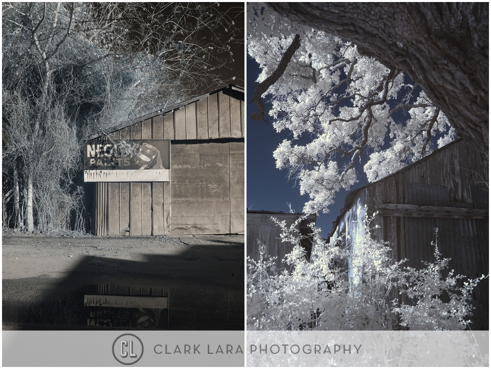 clark_lara_photography_PFT02