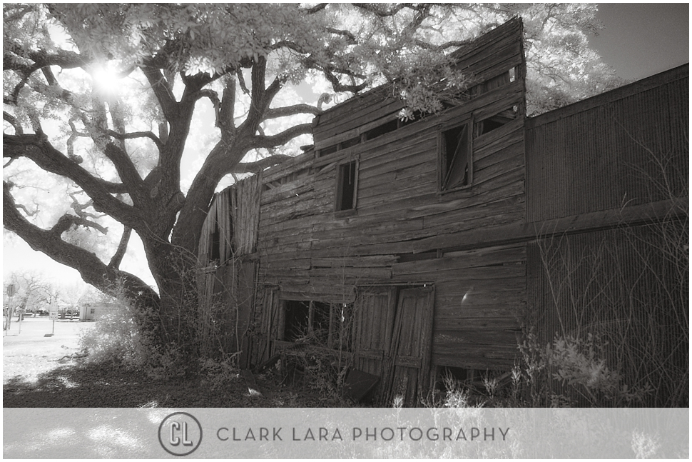 clark_lara_photography_PFT06