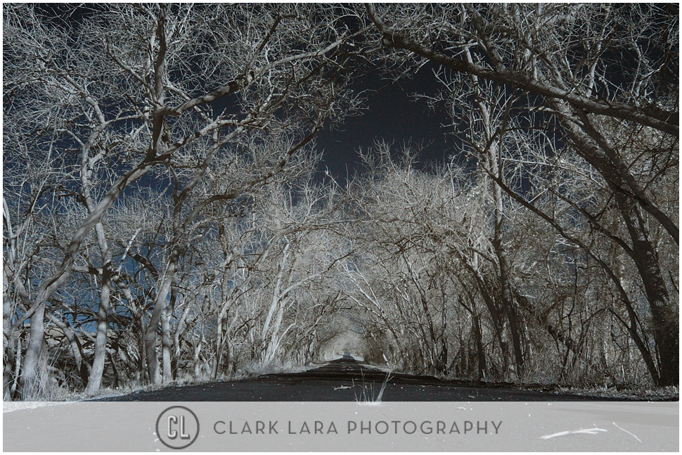 clark_lara_photography_PFT07