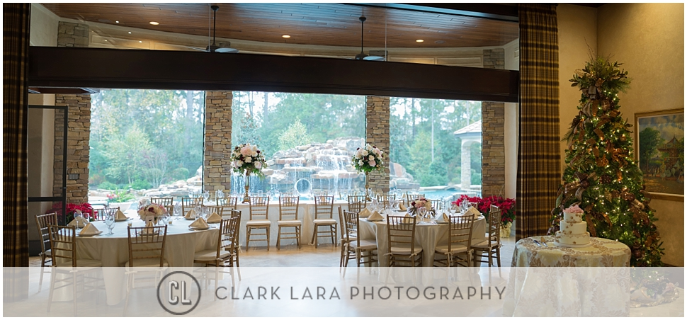 woodlands_wedding_reception_CJD02